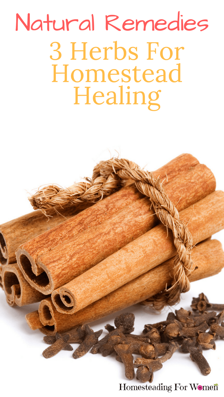 Natural Remedies 3 Herbs for homestead healing