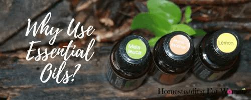 Where buy essential oils