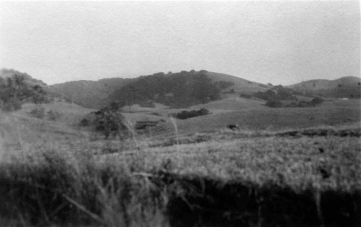 The Puente Hills Field And Hills 2006.186.1.3