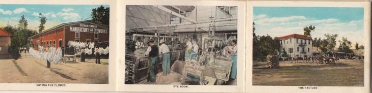 2012.673.1.1 more images frm Cawston souvenior pamphlet