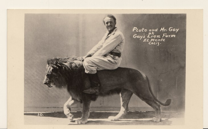 97.12.1.3 Gay riding on lion
