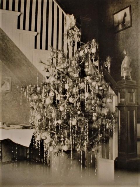 Xmas tree ca 1900
