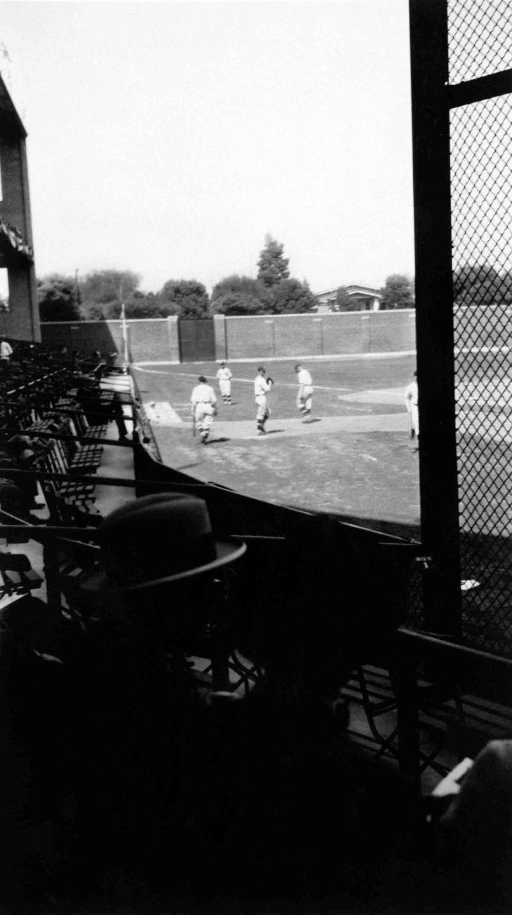 A Snapshot Of Wrigley Field Baseball Game 2014.977.1.3i
