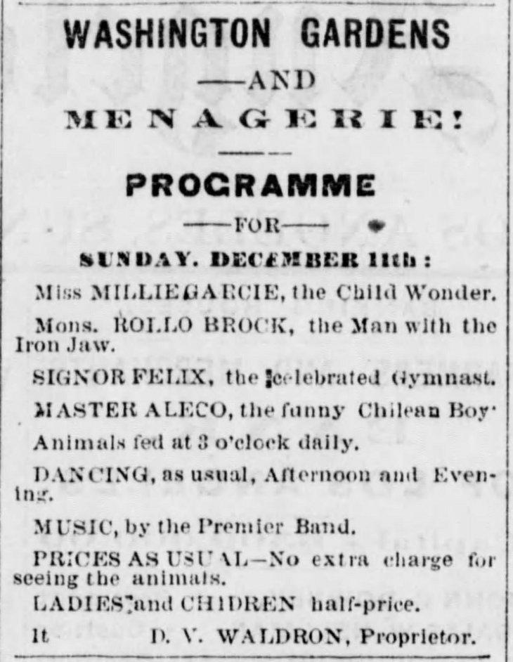 Washington Gardens Herald_Dec_12__1875_