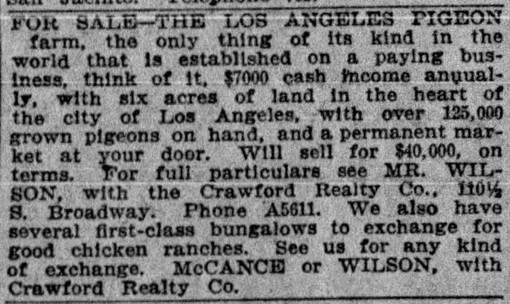 The_Los_Angeles_Times_Wed__May_17__1911_