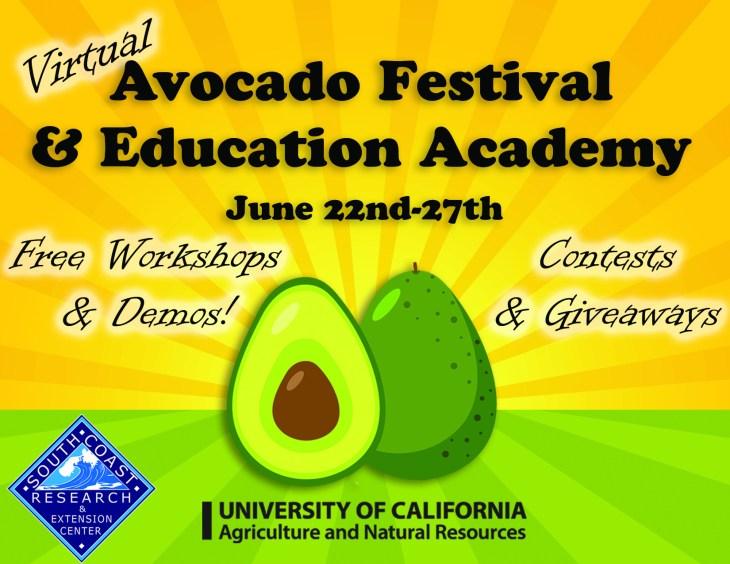 Avocado Festival 2020