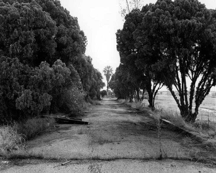 Evergreen Lane East Toward Cemetery 99.5.1.30