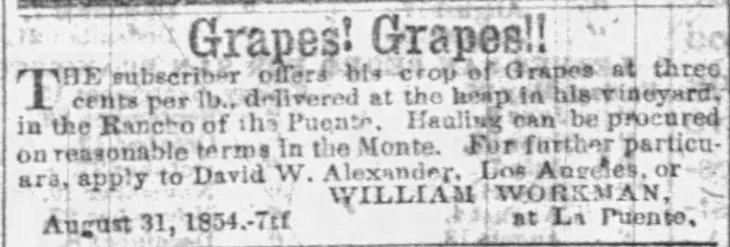 WW grape ad Southern_Californian_Thu__Sep_7__1854_