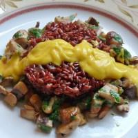 Neu: Mac Cheese-Sauce ohne Cashew-Kerne, die Alternative für Allergiker