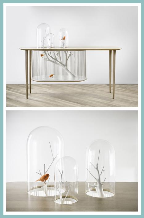 Gregoire de Lafforest table cage oiseaux