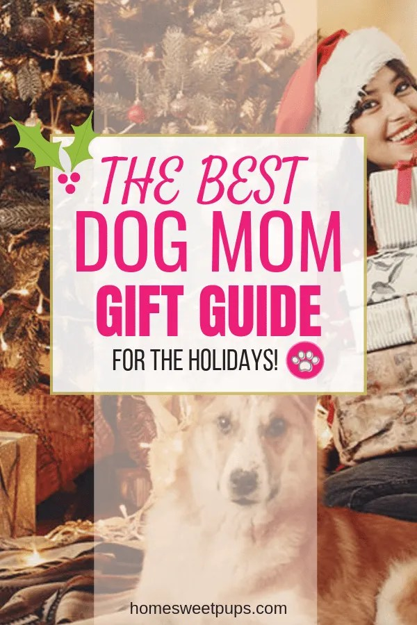 The Best Dog Mom Gift Guide. A Dog mom with santa hat and her dog.