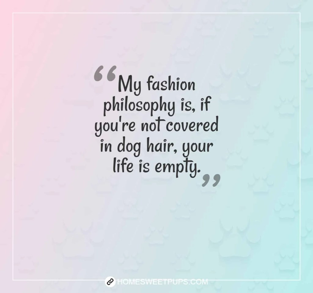 "Quote about dogs loyalty "" My fashion philosophy is, if you""re not covered in dog hair, your life is empty"""