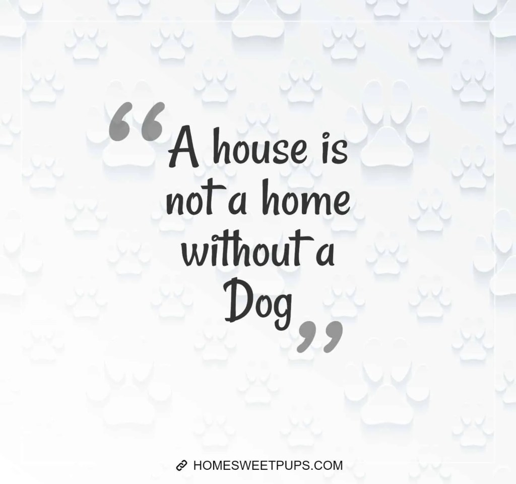 "Quote about dogs loyalty ""A house is not a home without a dog"""