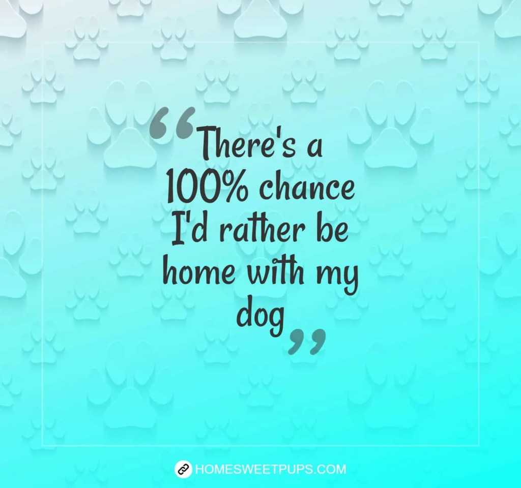 "Quote about dogs loyalty ""There's a 100% chance I'd rather be home with my dog"""