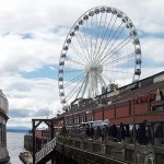 Take Your Family On A Cheap Seattle Dinner Cruise For $31!
