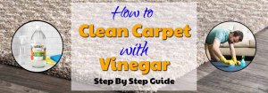 How to Clean Carpet with Vinegar?