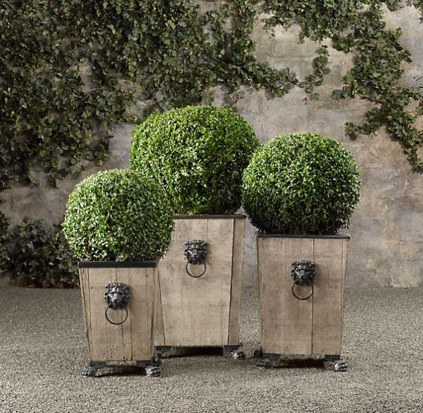 boxwood topiary3