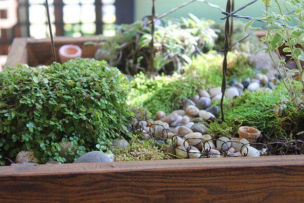 beautiful-tabletop-woodland-garden-1