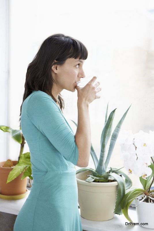 keeping-houseplants-healthy-2