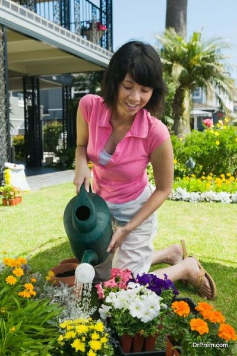 Healthy Lawn for a Healthier Environment (4)