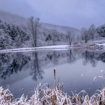 landscape pond and snow