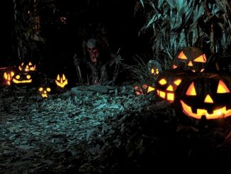 Scary Halloween Haunted House Outdoor Decoration 104