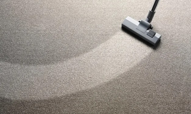 5 of the Best Carpet Cleaners Reviewed
