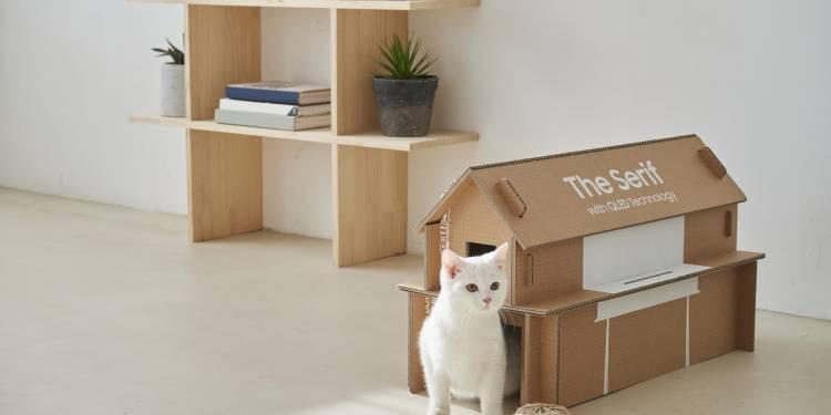 Samsung Cardboard Cat House