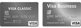 visa-grey-simple-and-corporate