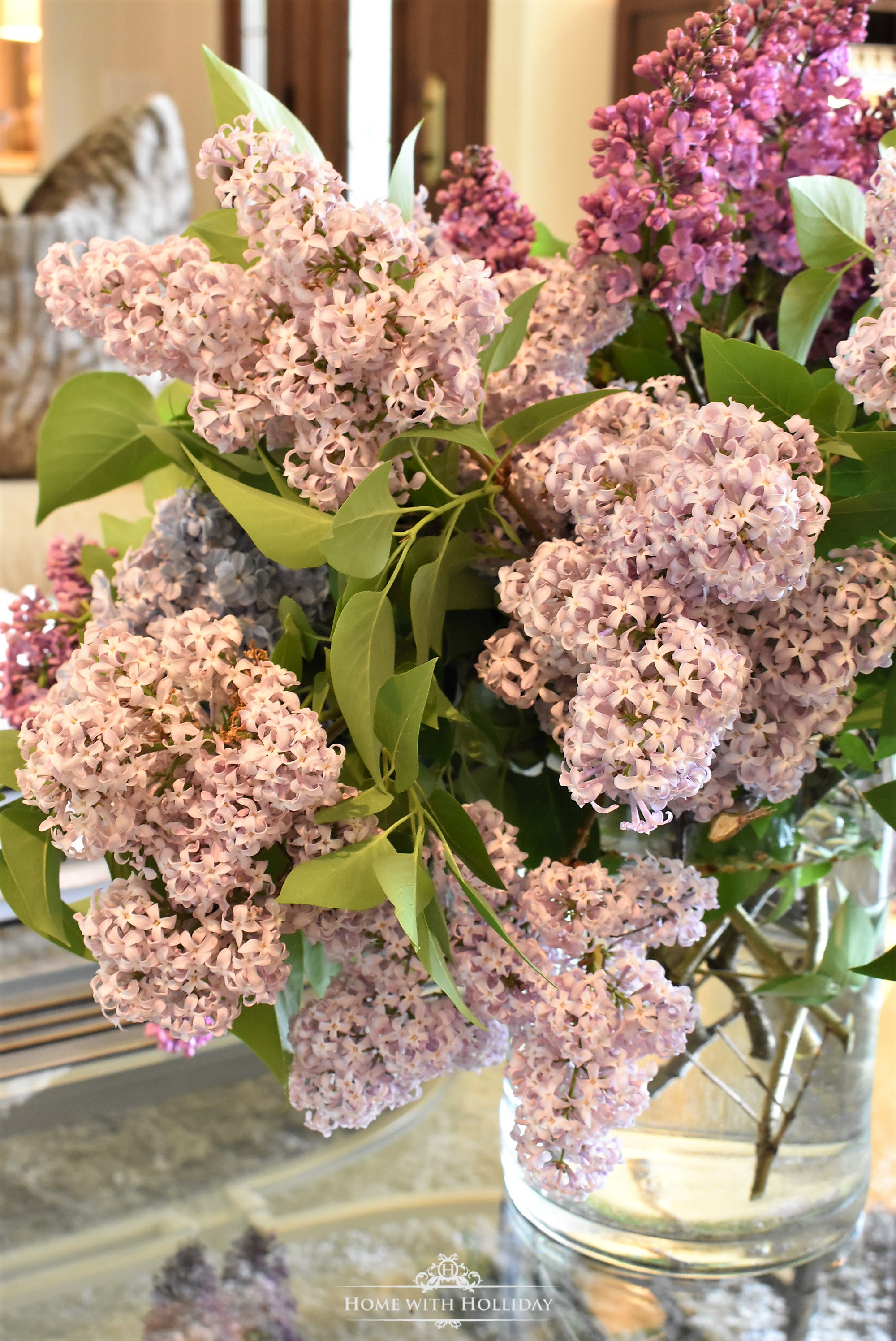 Pruning and Enjoying Lilacs 18