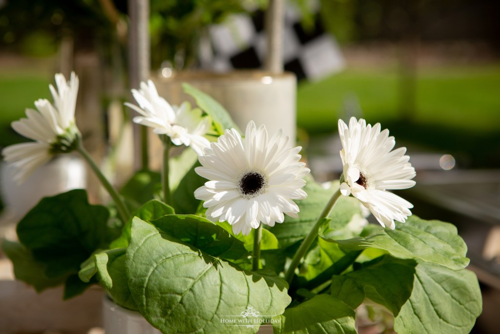 Black and White Outdoor Graduation Party Flowers- Home with Holliday