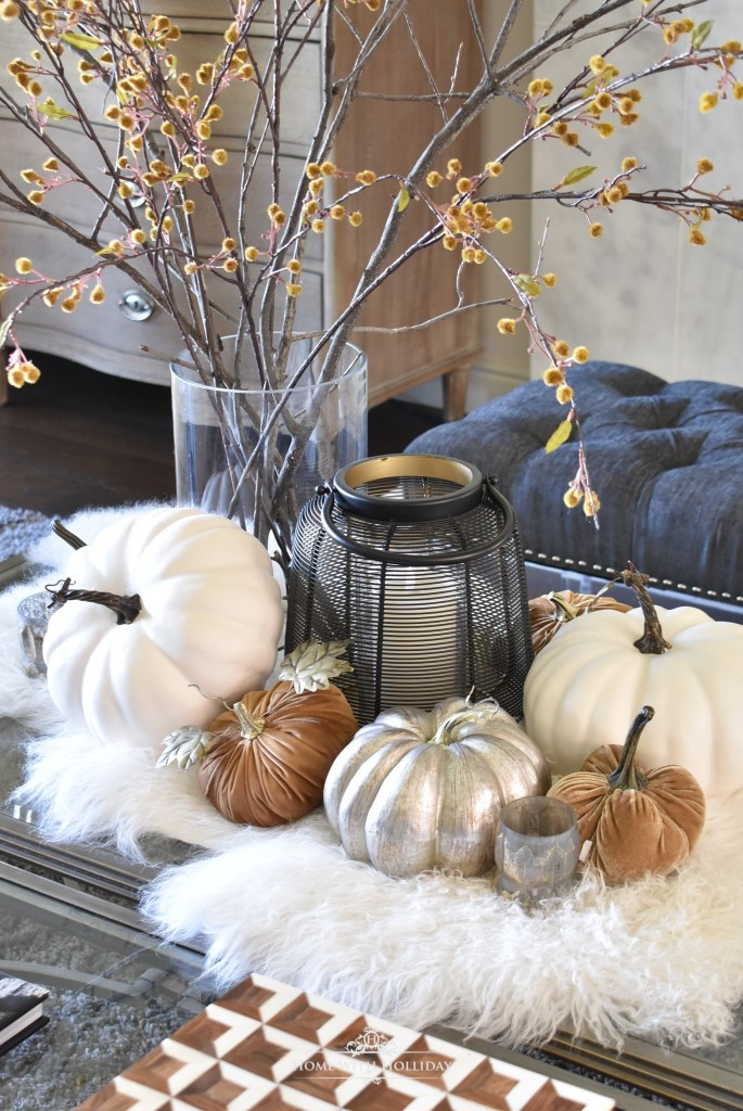 Elegant Warm and Cozy Fall Coffee Table Styling in Living Room
