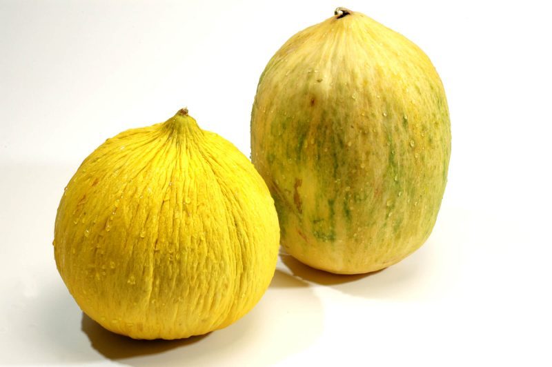 5 Reasons to Eat Crenshaw Melon - The Produce Moms