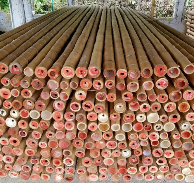 The Best 4 Types of Bamboo Used in Construction - TopBambooProducts.com