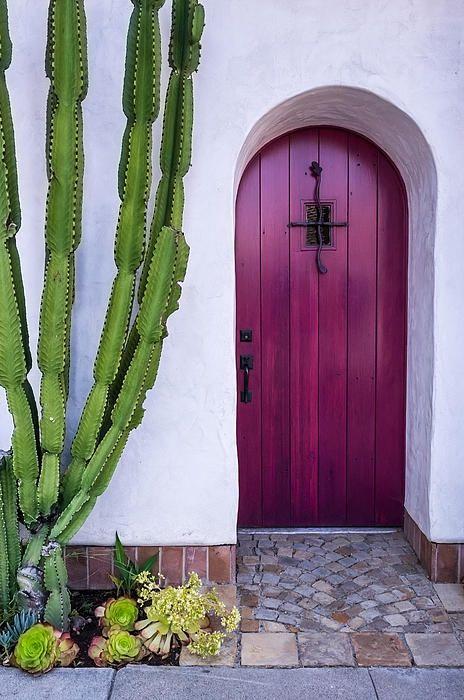 cactus and purple door