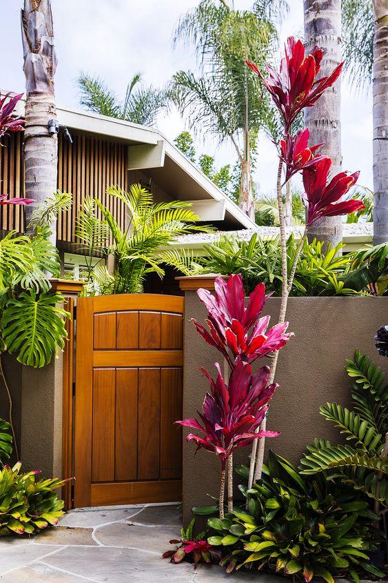 front gate tropical garden ideas