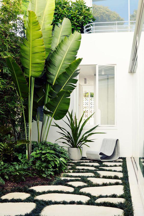 modern monochrome tropical garden