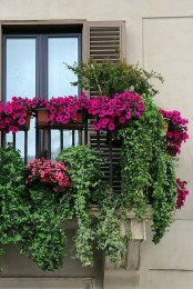 Amazing Gardening Balcony Low Budget 01