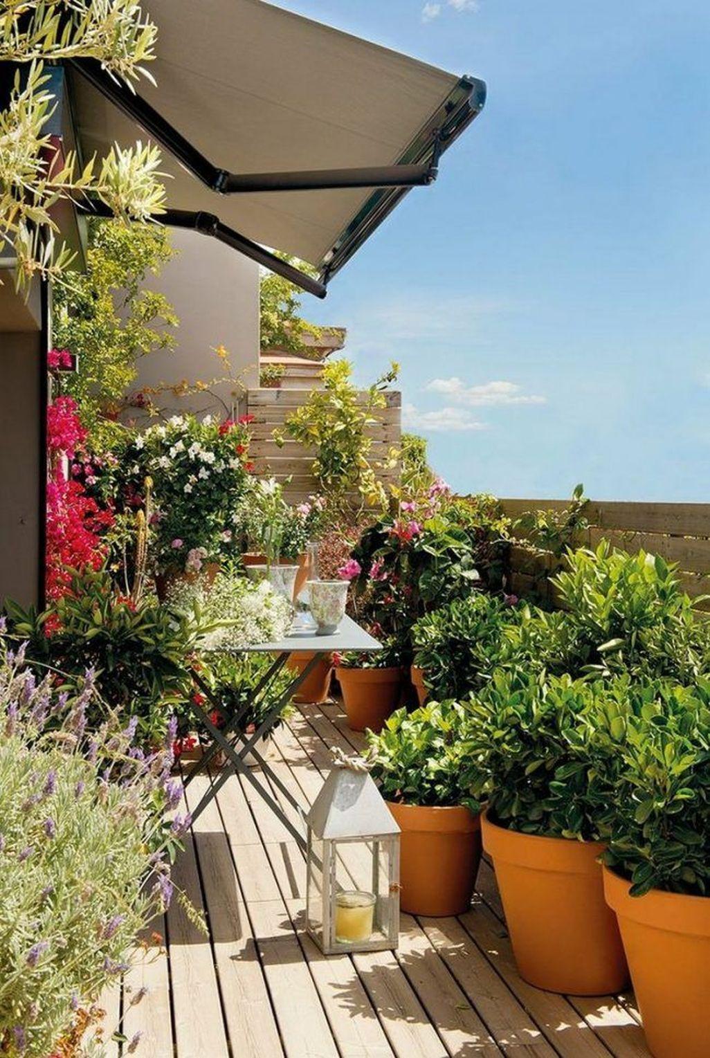 Amazing Gardening Balcony Low Budget 34