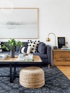 Lovely Blue Livigroom Ideas 12
