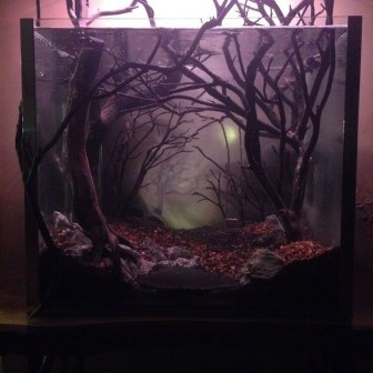 Amazing Aquarium Design Ideas Indoor Decorations 22