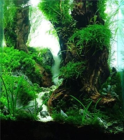 Amazing Aquarium Design Ideas Indoor Decorations 26