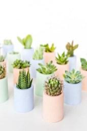 Amazing Diy Succulents Indoor Decorations 32