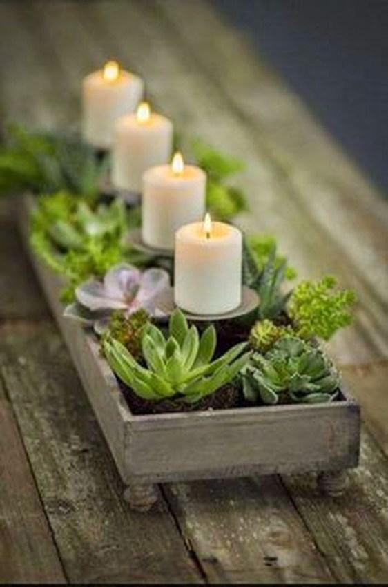 Amazing Diy Succulents Indoor Decorations 38