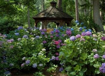 Amazing Low Maintenance Garden Landscaping Ideas 13
