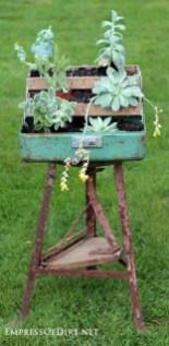 Amazing Succulents Garden Decor Ideas 02