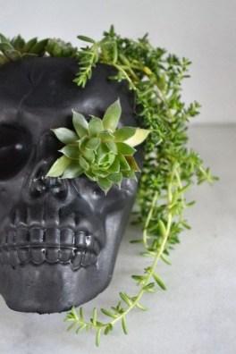 Amazing Succulents Garden Decor Ideas 15