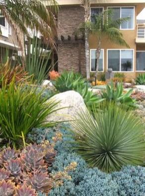 Amazing Succulents Garden Decor Ideas 16