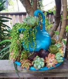 Amazing Succulents Garden Decor Ideas 20