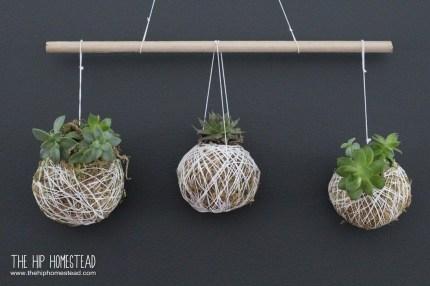 Amazing Succulents Garden Decor Ideas 25